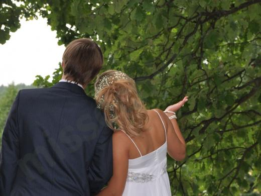 жених и невеста около зелёного дуба