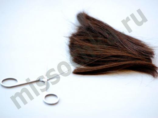 ножницы и отрезанная прядь волос