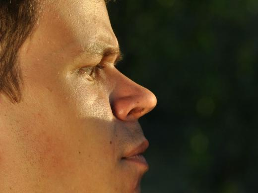 мужской нос